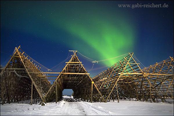 Nordlicht über Fischgestellen