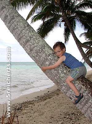 Noah klettert