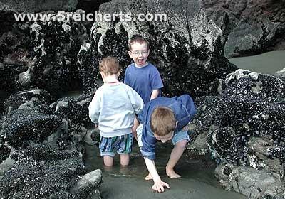 Kinder im Tidepool