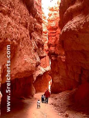 Bryce Canyon unten
