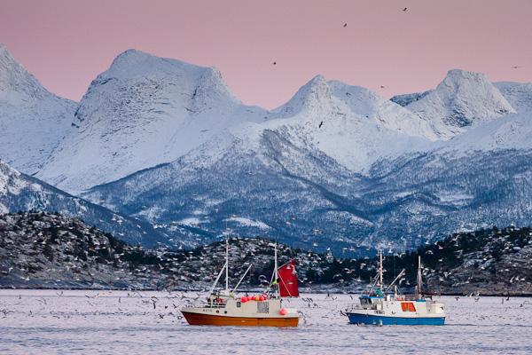 Fischerboote im Tysfjord, diese Lichtstimmung hielt sich übrigens stundenlang