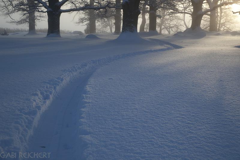 durch den Schnee zm See