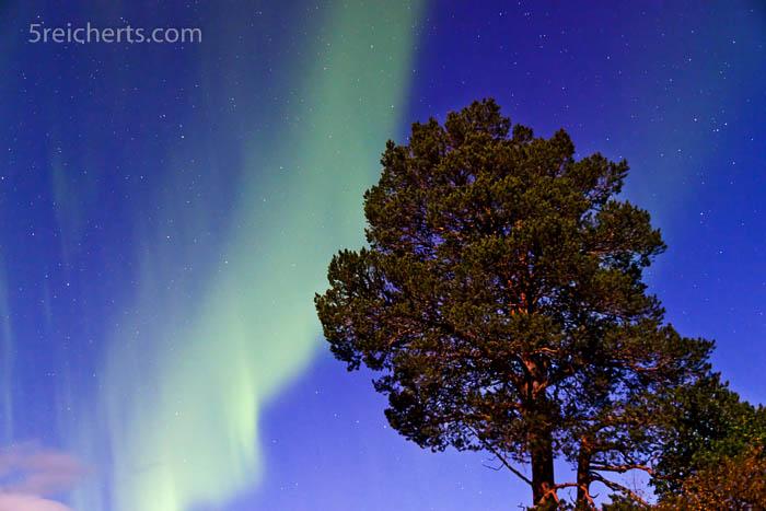 Nordlicht im Herbst, Nord Norwegen