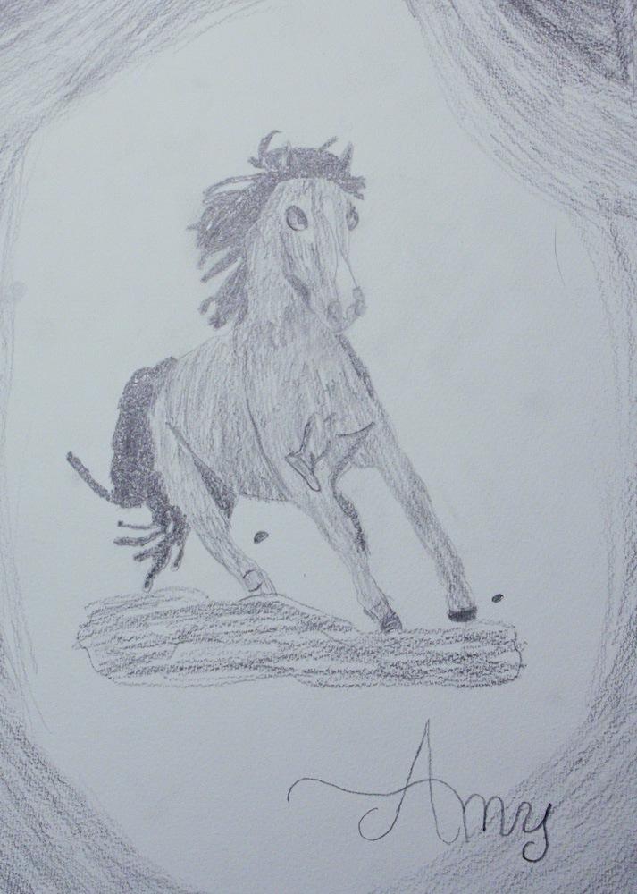 Amy hat ein Pferd gemalt