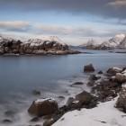 Begegnung im Winter auf den Lofoten