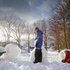 Schneemoster auf den Lofoten