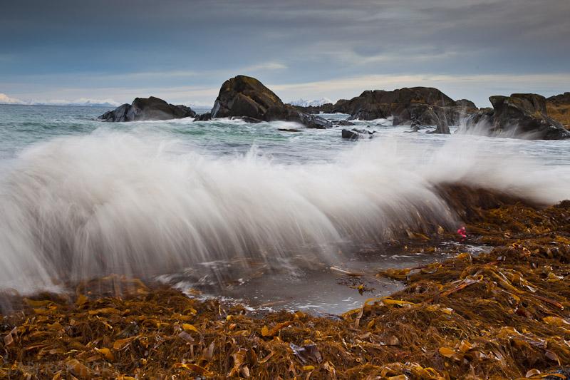 Wellen die kommen und gehen