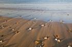 Kieselsteine am Strand