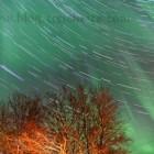 Nordlicht und Sternenbahnen