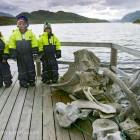 auf Tour in Nord Norwegen