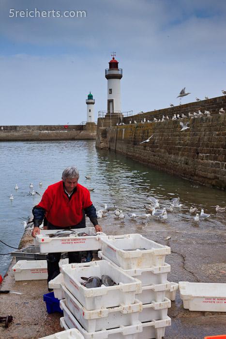 der Fischer bei der Arbeit