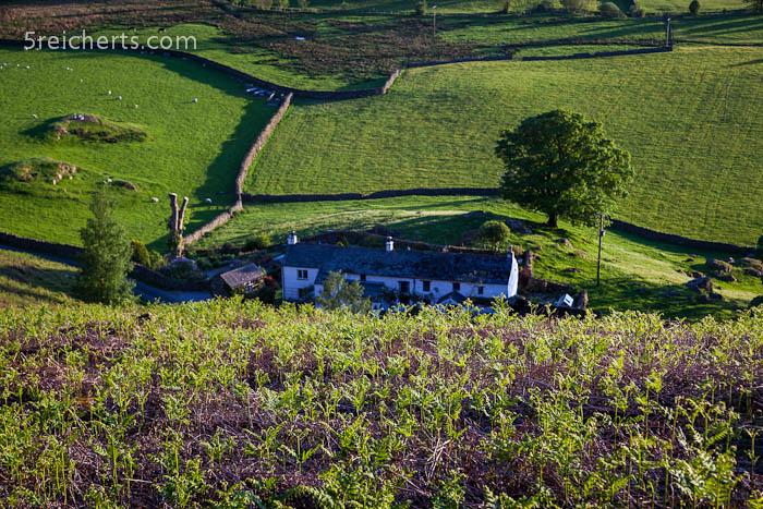 Ein Bauernhaus inmitten von Schafsweiden