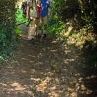 matschige Wanderwege