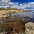 typische Küste Northumberland