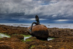 die nordische Meerjungfrau in Ballintore