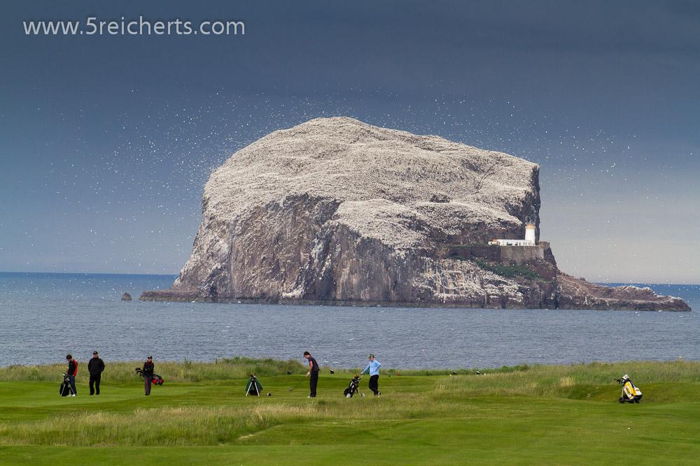 Golfplatz mit wunderbarer Aussicht auf den Bass Rock
