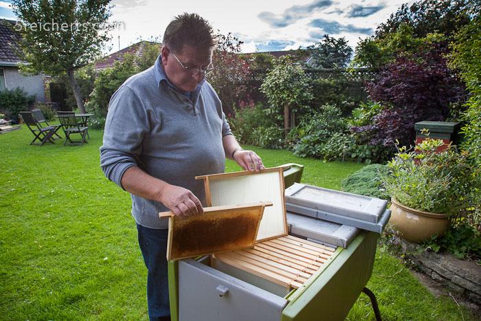 Lovat mit seinen Bienen - er hilft in Jamacia, damit die Menschen dort mit Honig Geld verdienen können!