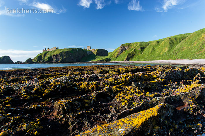 Strand mit glitschigen Felsen, Dunnottar Castle