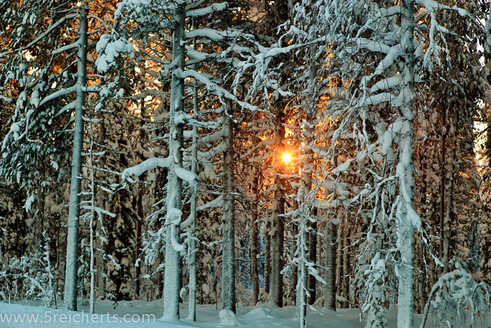 wenn auch kurz, manchmal zeigt sich die Sonne doch, Lappland, Schweden