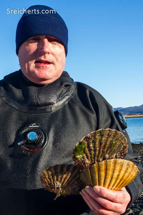 frischer geht es nicht, Jakobsmuscheln und David Oakes, Isle of Skye