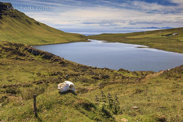 See kurz vor dem Ziel, Neist Point, Isle of Skye, Schottland