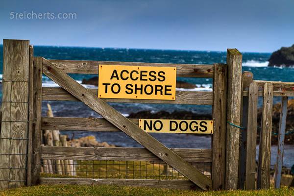 Noch ein Gatter, Shetland