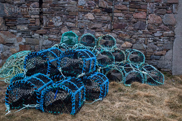 Hummerreusen Whalsay, Shetland