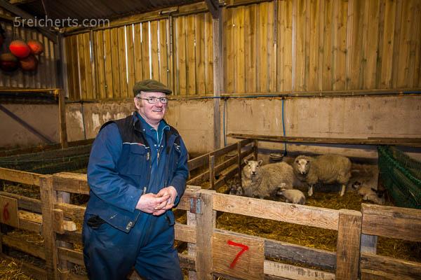 Schaffarmer und neugeborene Lämmer