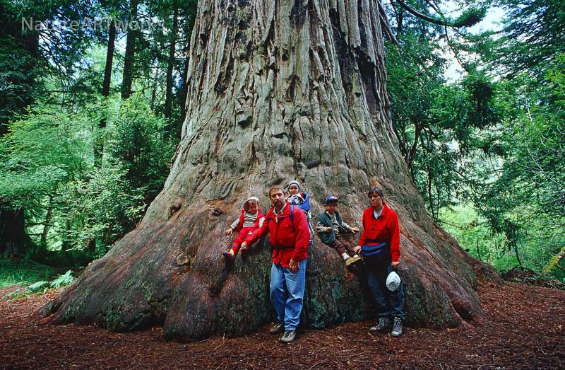 die 5reicherts auf der ersten langen Reise, USA im Jahr 2000