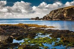 Algen nach dem Regen, Shetland