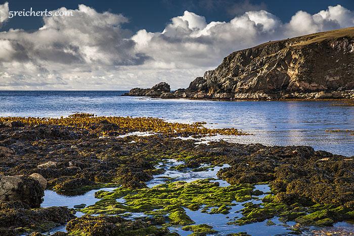 Algen nach dem Regen, Shetland. 1/80 sec, f 8, 100 ISO, 68mm - Canon 5D