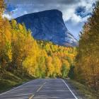 Rushhour in Nord Norwegen