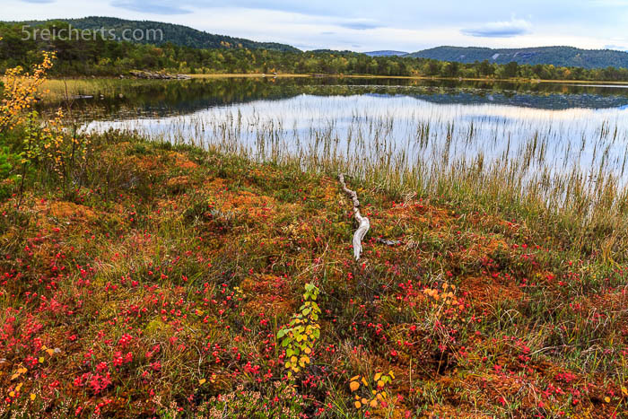 Ein kleiner See im Hamaroy