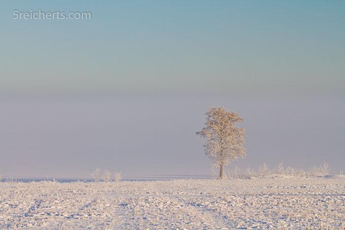 Nebel am See, Schweden