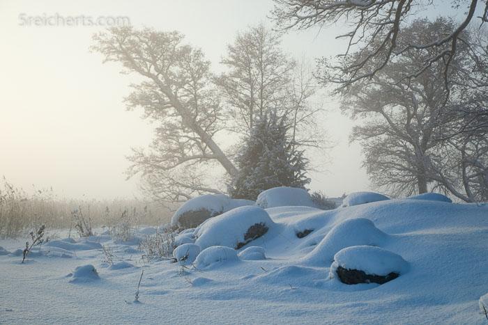 Am See im schwedischen Winter