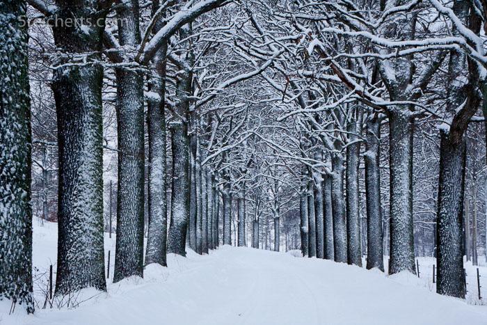 nach dem Schneesturm, Schweden