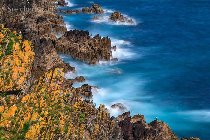 Küstenlandschaft zwischen Polperro und Looe