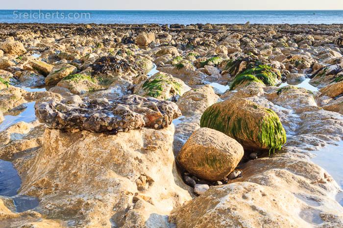 Gezeitenbecken in den Kreidefelsen, Beachy Head, England