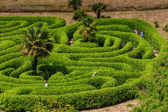 Das Heckenlabyrinth, Glendurgan Garten des National Trust