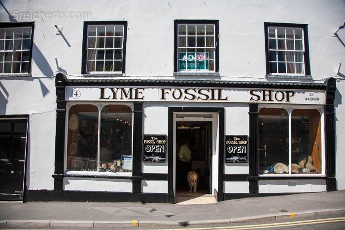 Fossiliensucher sind hier gut aufgehoben