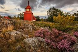 Heidekraut und Kirche von Kökar