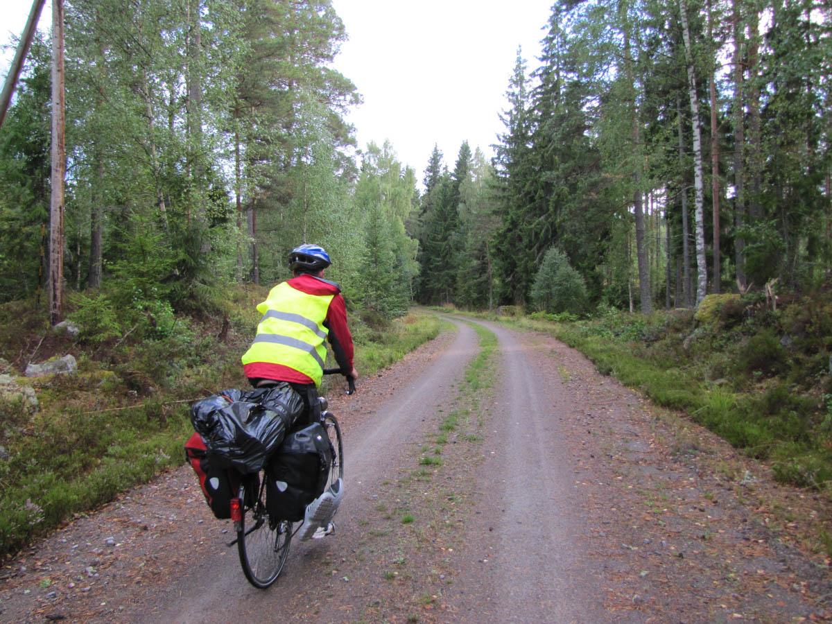 Ein typischer Waldweg