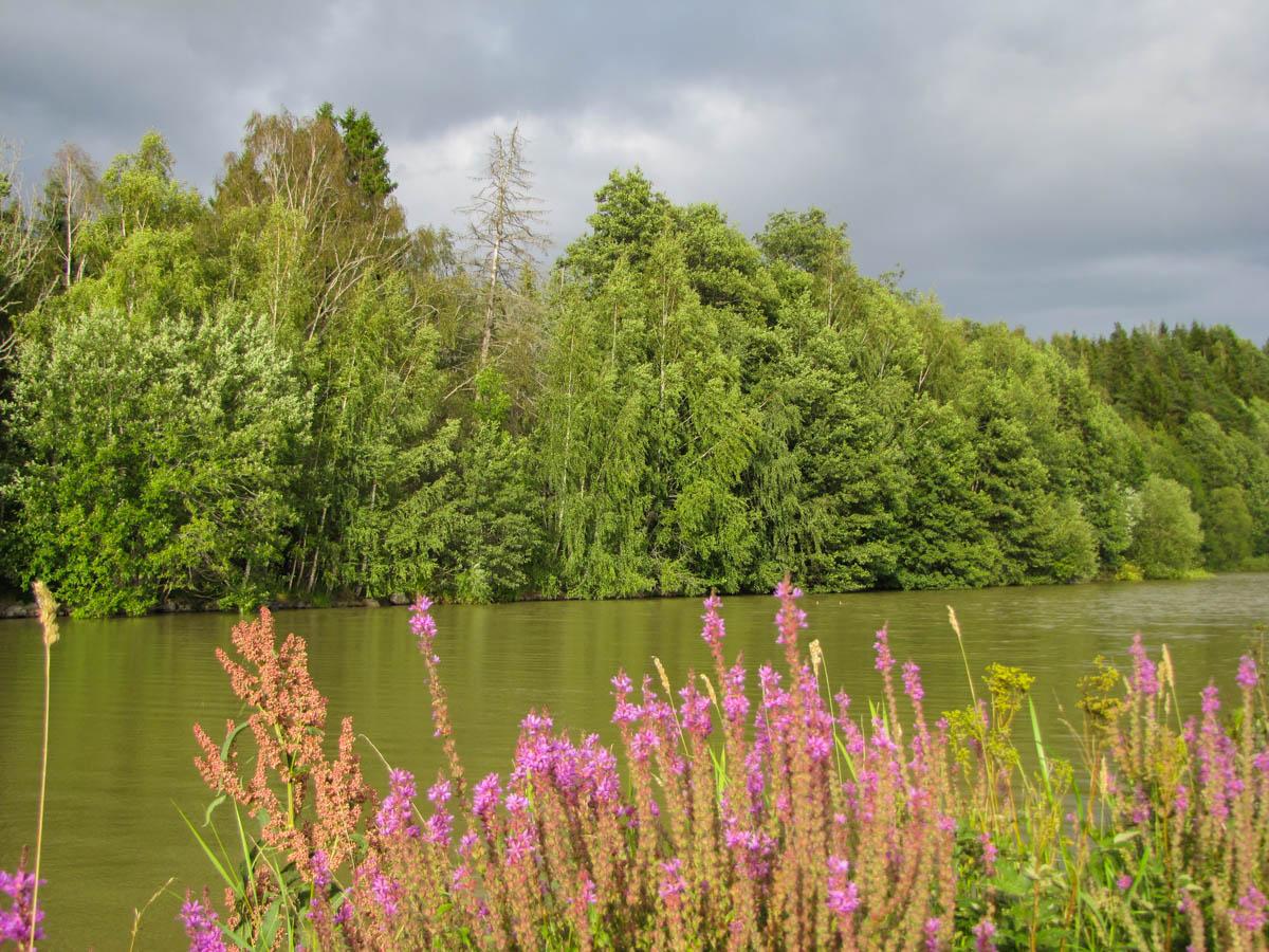 Die Landschaft entlang des Kanals war sehr grün