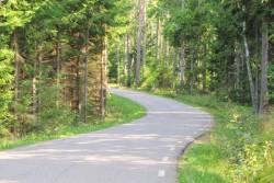 Die Landstraßen nördlich von Motala