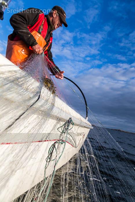 Einholen der Netze