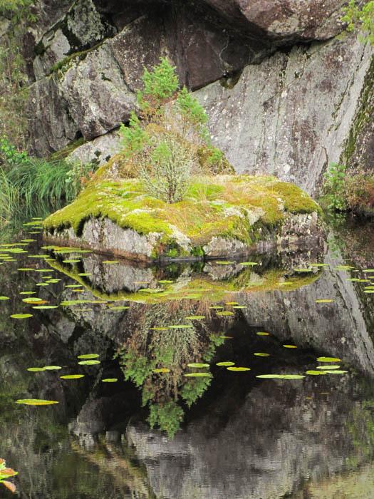 Eine winzige Insel in einem der Millionen Seen in Schweden