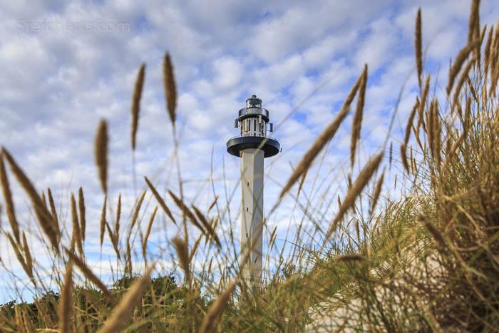 Der Leuchtturm von Dueodde zwischen Strandhafer