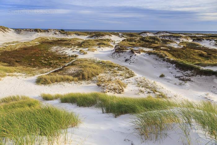 Die Dünenlandschaft bei Dueodde