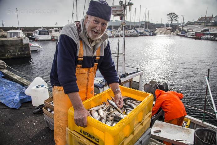 Ein Fischer im Hafen von Svaneke