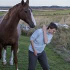 Amy und das Pferd